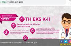 Berharap Ada Pendaftaran PPPK untuk Honorer K2 Tahap Kedua - JPNN.com