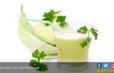 Kulit Tetap Awet Muda dengan Rajin Minum Jus Kubis, Catat Resepnya - JPNN.com