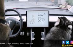 Mobil Ini Punya Mode Canggih untuk Jaga Hewan Tetap Aman - JPNN.com