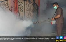Wabah Demam Berdarah Meluas, Wabup Turun Tangan Fogging ke Rumah Warga - JPNN.com