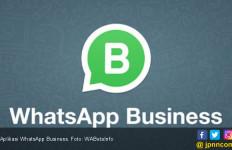 WhatsApp Business Akan Hadir di iOS - JPNN.com