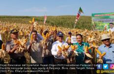 Kementan Siap Memfasilitasi Kerja Sama Petani dan Peternak Ayam - JPNN.com