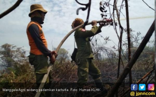 Lulusan Kehutanan, Jokowi Seharusnya Bisa Cepat Selesaikan Persoalan Karhutla Riau - JPNN.com