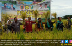Pesan Penting Dirjen PSP Sarwo Edhy untuk Petani Tanah Laut - JPNN.com