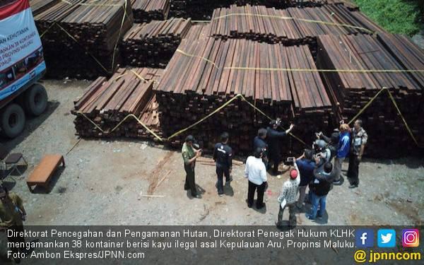 KLHK Bongkar Mafia Kayu di Aru - JPNN.com