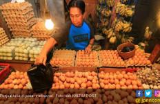 Mentan Amran Jamin Harga Telur Tetap Rp 23.000 Per Kilogram - JPNN.com