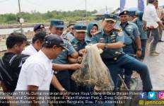 Lanal Dumai Gelar Panen Raya Udang di Desa Binaan Selat Baru - JPNN.com
