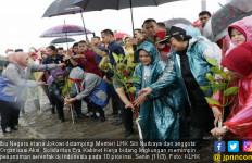 Iriana Jokowi Pimpin Penanaman Mangrove di 10 Provinsi - JPNN.com