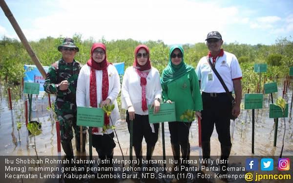 Ibu Menpora dan Ibu Menteri Agama Tanam 5.000 Pohon Mangrove - JPNN.com