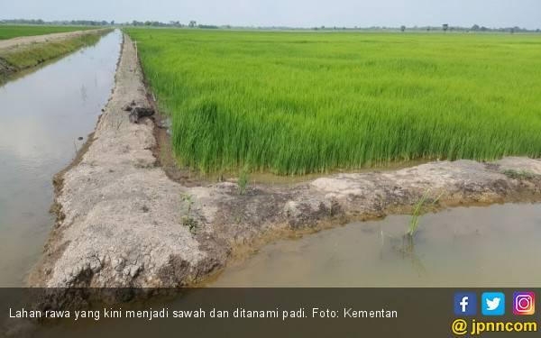 Kementan Optimistis Program Serasi di Kalimantan Selatan Sesuai Harapan - JPNN.com