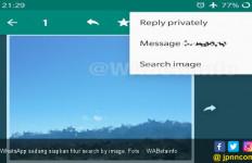 WhatsApp Siapkan Fitur Anyar yang Bisa Deteksi Gambar Palsu - JPNN.com