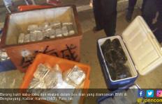 BNN Tangkap Dua Orang Terduga Pembawa Sabu-sabu Seberat 100 Kilogram - JPNN.com