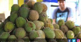 Durian Indonesia Siap Akhiri Dominasi Musang King Malaysia di Pasar Tiongkok