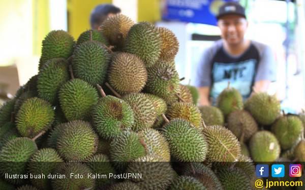 10 Manfaat Durian, Terakhir Cocok Buat Pengantin Baru - JPNN.com