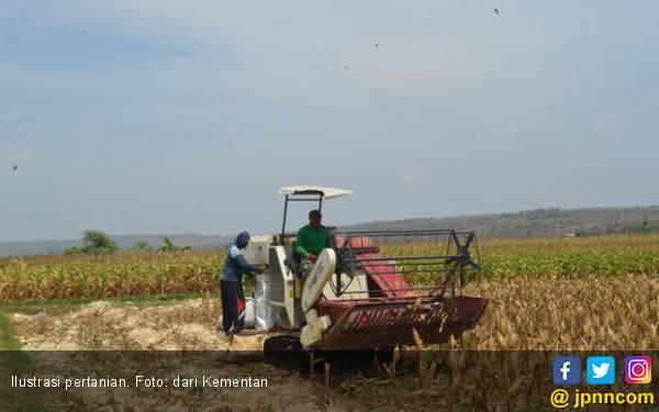 Kementan Serap Aspirasi: Produksi dan Pendapatan Petani Meningkat - JPNN.com