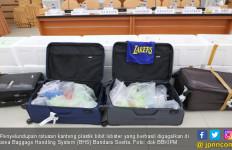 Penyelundupan Benih Lobster Rp19 miliar Berhasil Digagalkan di Bandara - JPNN.com