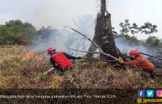 Manggala Agni Terus Pantau Hotspot dan Lakukan Groundcheck - JPNN.com