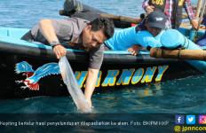 Bu Susi Perlu Tahu Kajian UBT Soal Larangan Tangkap Kepiting Bertelur - JPNN.com