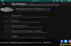 WhatsApp Bakal Punya Tampilan Dark Mode - JPNN.com