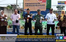 Bea Cukai Tanjung Perak Musnahkan Puluhan Ribu Miras Ilegal - JPNN.com