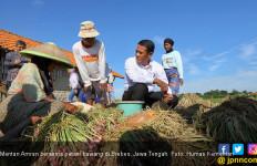 Soal Bawang Merah, Mentan: Indonesia Mampu Serang Balik dengan Ekspor - JPNN.com