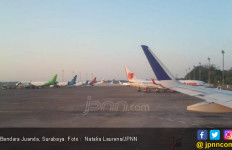 Rencana Pemerintah Menurunkan Harga Tiket Pesawat Disambut Senyum Bisnis Asuransi - JPNN.com