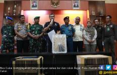 Bea Cukai Berhasil Gagalkan Penyelundupan Hewan Langka dan Rokok Ilegal - JPNN.com