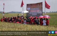 Panen Raya Padi MSP, Megawati Dukung Penelitian di Sektor Pangan - JPNN.com