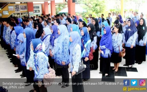 Seleksi Calon PPPK, Tenaga Bidang IT jadi Prioritas - JPNN.com