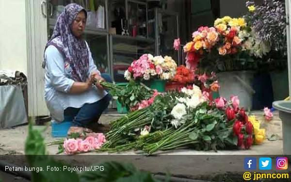 Manfaat Luar Biasa Bunga Segar di Rumah Anda - JPNN.com