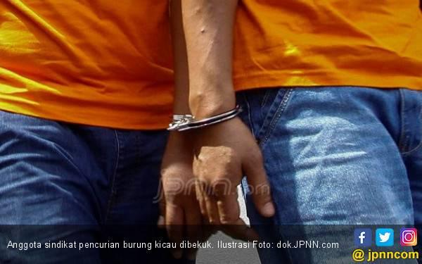 3 Anggota Sindikat Pencurian Burung Kicau Dibekuk, Mereka Bagi - bagi Tugas - JPNN.com