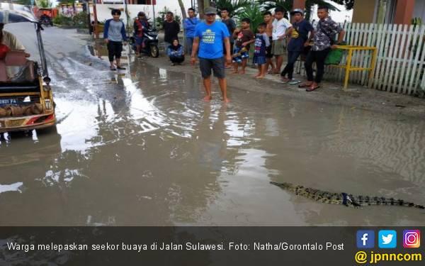 Jalan Rusak, Warga Kesal, Buaya Dilepas - JPNN.com