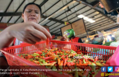 Harga Bahan Pokok Terus Merangkak Naik Jelang Ramadan - JPNN.com