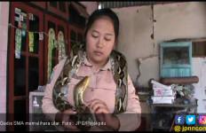 Nyali Besar, Siswi SMA ini Hobi Pelihara Ular Piton - JPNN.com