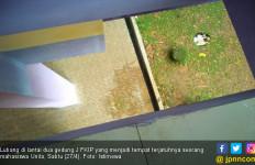 Mahasiswi Unila Tewas Mengenaskan Usai Terjatuh dari Lantai Dua Kampus - JPNN.com