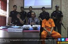 Pecatan Polisi Ini jadi Jaringan Pengedar Narkoba - JPNN.com