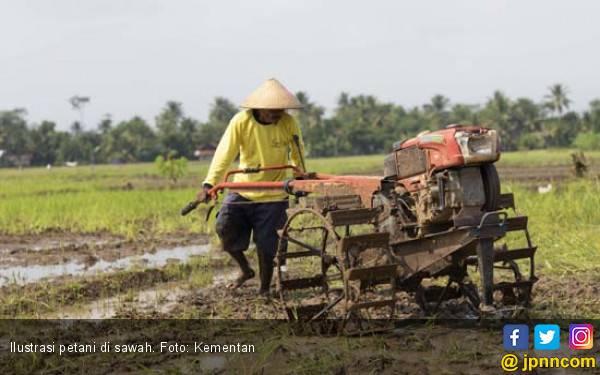 Petani Miskin di Cilacap Dapat Asuransi Pertanian Gratis - JPNN.com