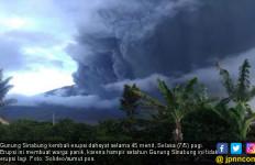 Gunung Sinabung Erupsi, Abu Vulkanik Rusak Tanaman Warga Barusjahe - JPNN.com