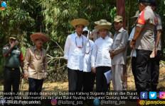 Gubernur: Kalau Ibu Kota Tidak di Kalteng, Lebih Baik Tetap di Jakarta - JPNN.com
