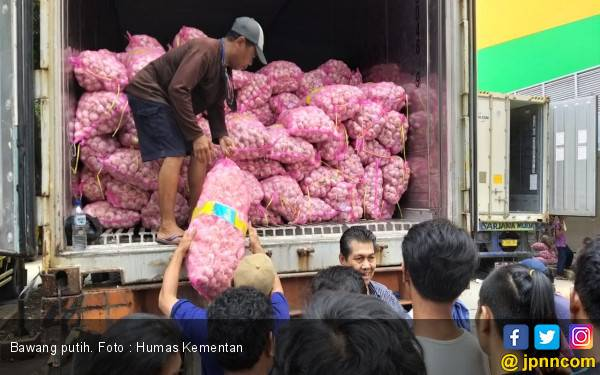 Harga Bawang Putih Sudah Turun, Kementan Tegas Terhadap Importir Nakal - JPNN.com