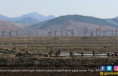 Korut Dilanda Kekeringan Ekstrem, 10 Juta Orang Terancam Kelaparan - JPNN.com