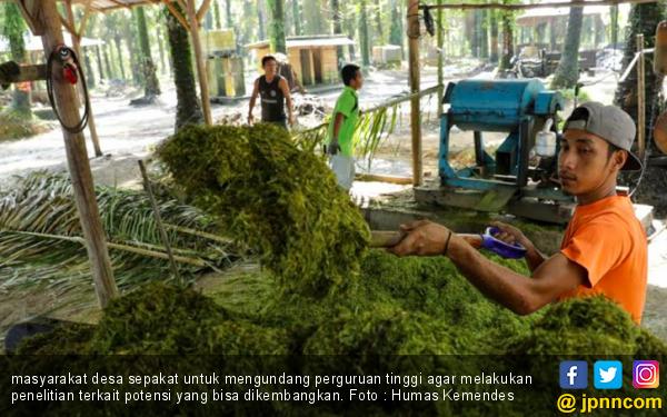 Inovasi Pupuk Organik dari Warga di Desa - JPNN.com