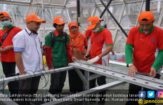 Ketum IGI: Pak Jokowi, Jangan Andalkan BLK Lagi - JPNN.com