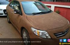 Ide Gila! Biar Mobil Selalu Adem, Wanita Ini Manfaatkan Kotoran Sapi - JPNN.com