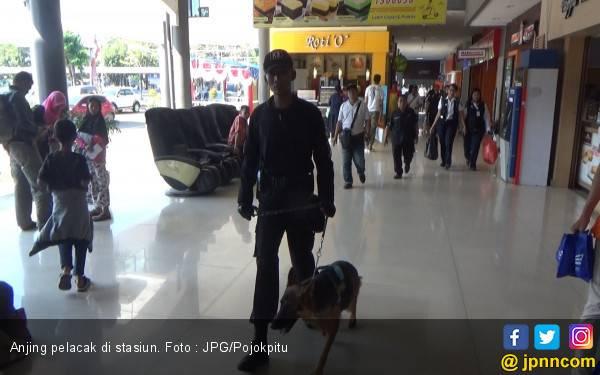 Anjing Pelacak Mulai Dikerahkan ke Stasiun Kereta Api - JPNN.com