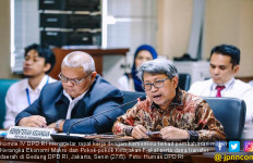 DPD RI Nilai Kebijakan Ekonomi dan Fiskal 2020 Banyak Kendala - JPNN.com