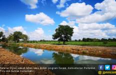 Tingkatkan Produktivitas Pertanian Rawa Dengan Membenahi Tata Air - JPNN.com