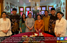 Kunjungan AHY dan Ibas ke Megawati Dinilai Hanya Ingin MenyelamatkanPartai - JPNN.com
