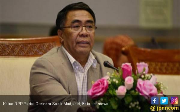 Gerindra Tidak Butuh Tawaran Menteri dari Jokowi, Tetap Akan Menjadi Oposisi - JPNN.com