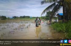 Banjir Merendam Sawah Seluas 1.500 Hektare, Petani Terancam Gagal Panen - JPNN.com